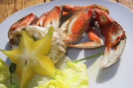 Crab Fishing and Feast Tour in Vancouver