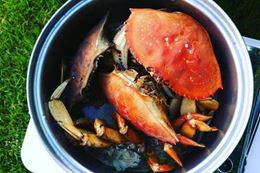 Crab Fishing and learn to cook crab Vancouver